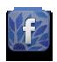 facebook icon mozaiek