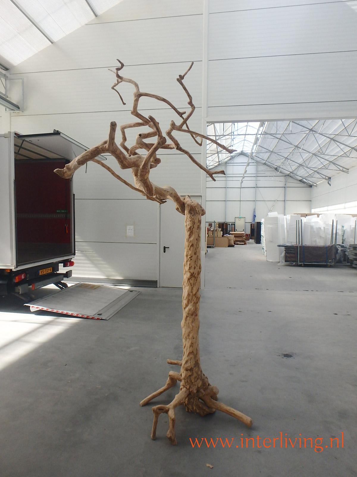 koffieboom met kronkel takken - java tree - speelboom voor papegaaien