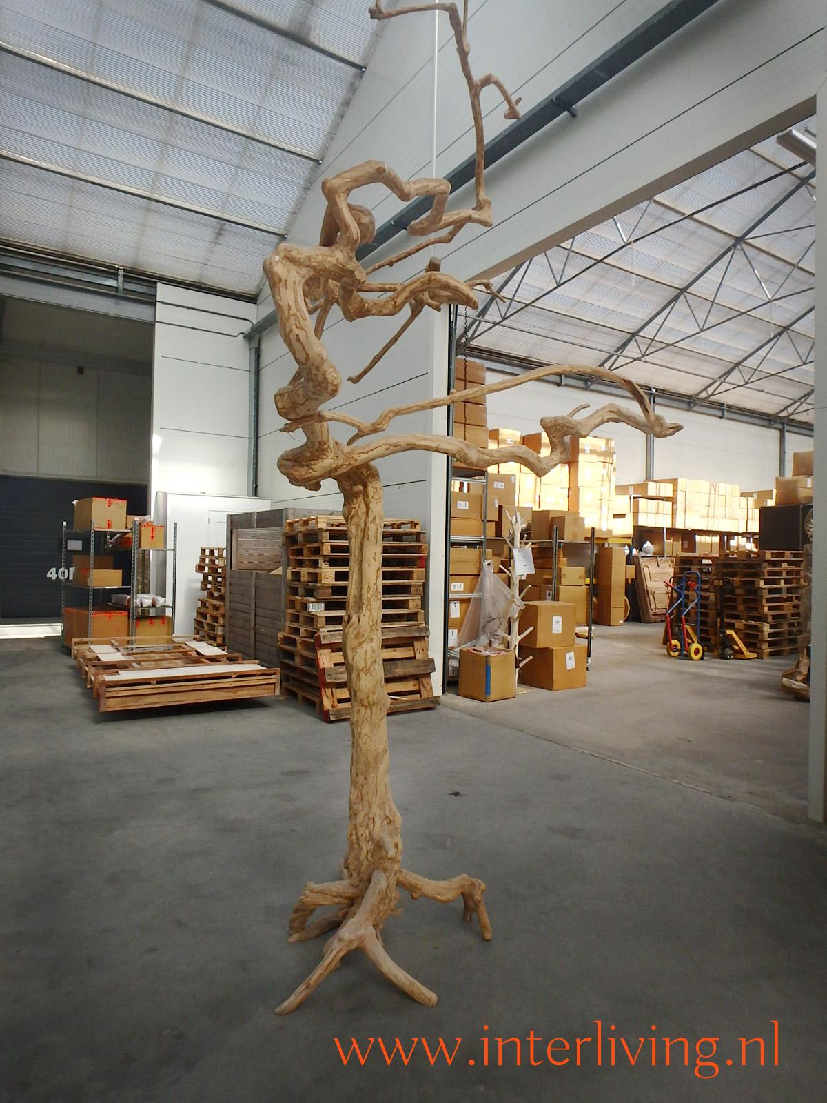 papegaaienboom met kromme takken - kapstok - woondecoratie - hout - Ibiza boom